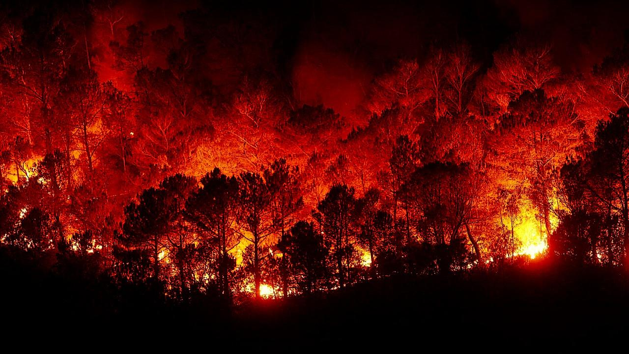 forest fires 2930096 1280
