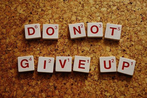 Do Not Give Up 2015253  340